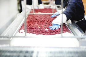 Production of frozen food
